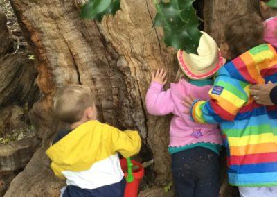 Little Birches Childrens Nursery and Pre School West Wickham Envrionment