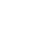 One Tree Planted Logo One Tree Planted is a non-profit 501(c)3 environmental tree planting charity that plant trees in countries around the world.